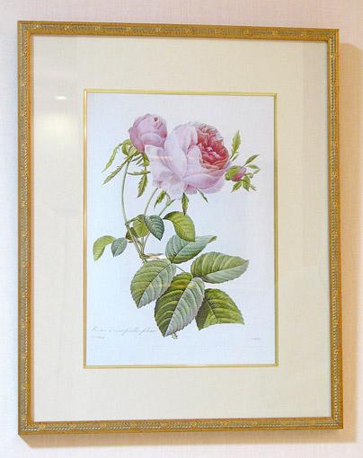 絵画 ル・ドゥテ ローズ ピエール・ドゥ・ロンサール
